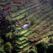 b199972_portugalia_madera_zachod_yspy