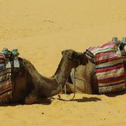 tunisia-1322875_960_720